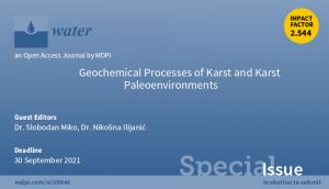 Banner Geochemical Processes of Karst Paleoenvironments